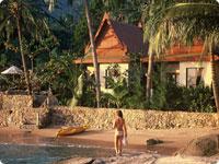 Rocky-Resort-w.jpg